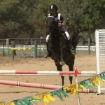 Oxley Recreation Reserve Horse Jumping2